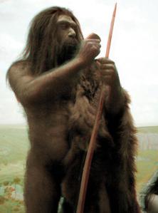 Neanderthal_2D[1]